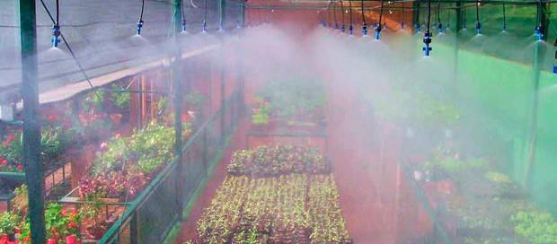 Nebulização