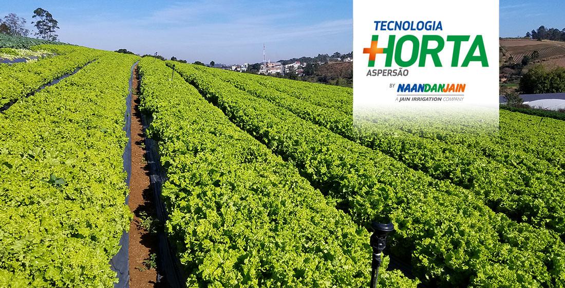 Tecnologia Mais Horta - Aspersão