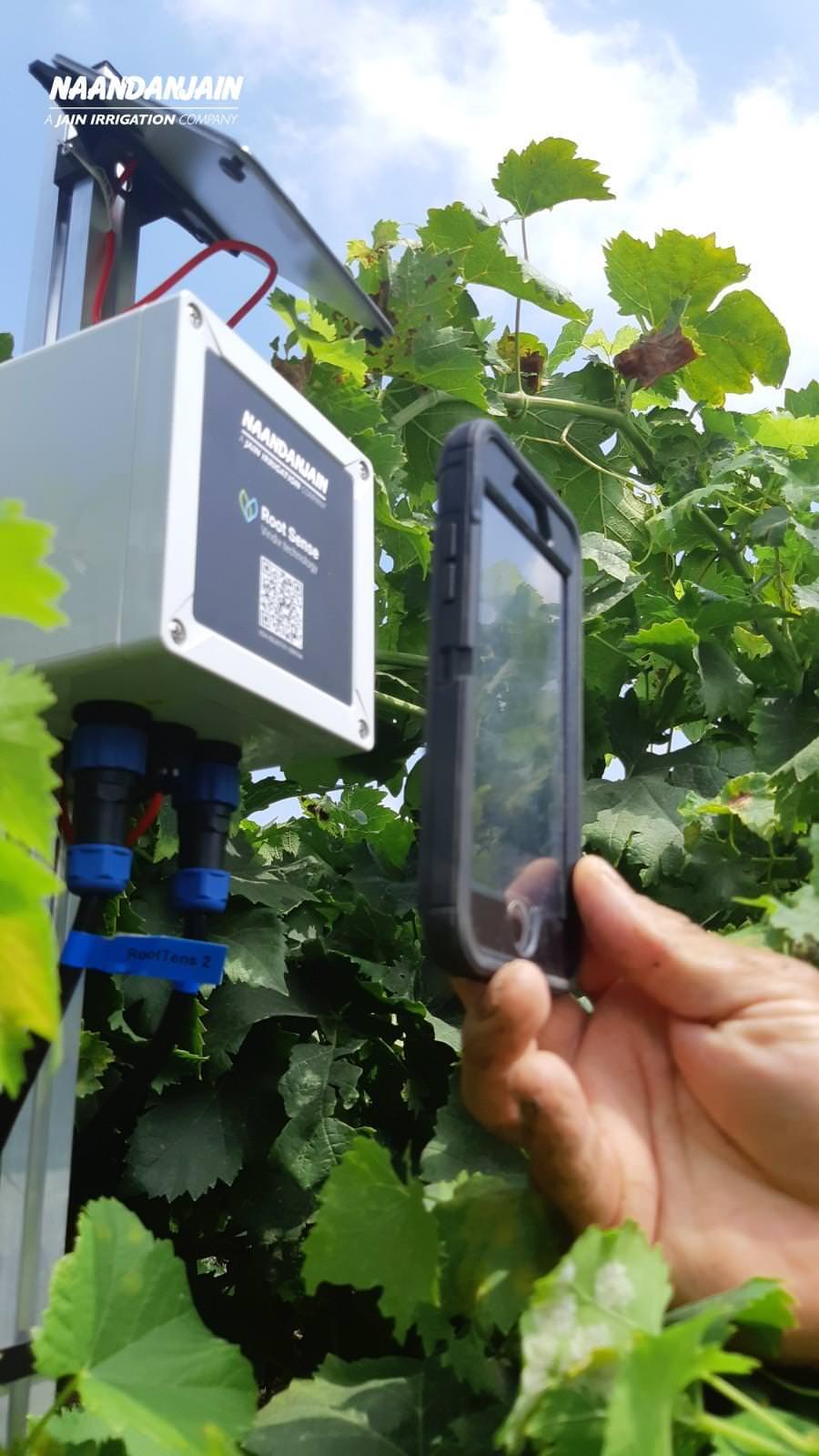 Uso da Mini Estação Root Sense Veridix